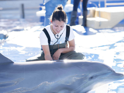 Photo - Zoological Parks and Aquariums: Commitment and animal education