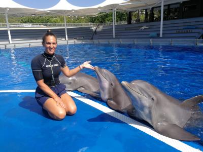 Photo - Aproximándonos y descubriendo a los delfines (vídeo)